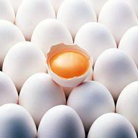 Яєчний протеїн