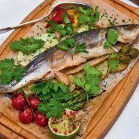 риба сібас користь і шкода