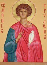 У чому допомагає святого трифона?