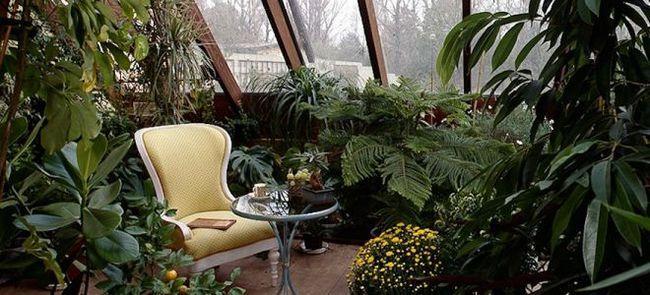 Зимовий сад на лоджії