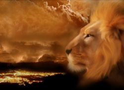 Знак зодіаку лев - характеристика